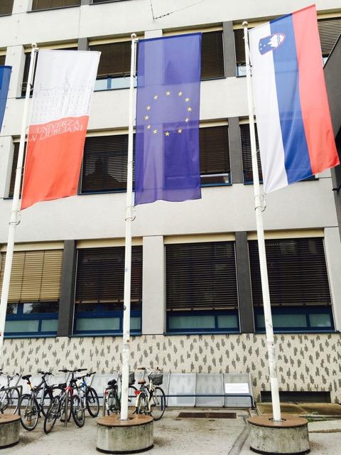 drapeaux - projets à l'international